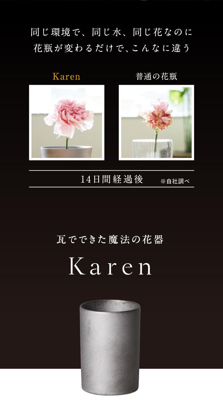 同じ環境・水・花でKarenと普通の花瓶を比較した画像