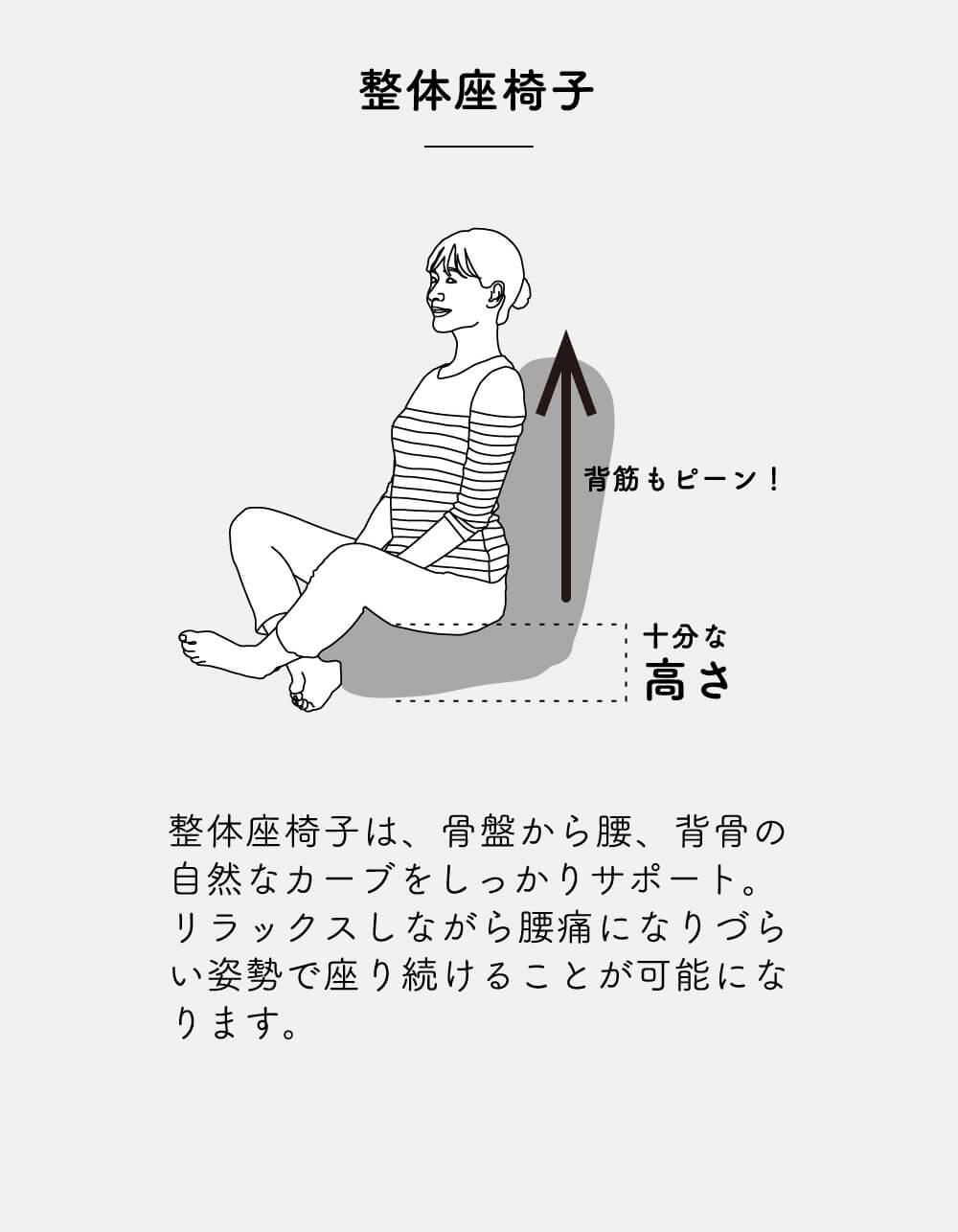 整体座椅子は体の自然なカーブをしっかりサポート 腰痛になりづらい体勢をリラックスしながら維持できます