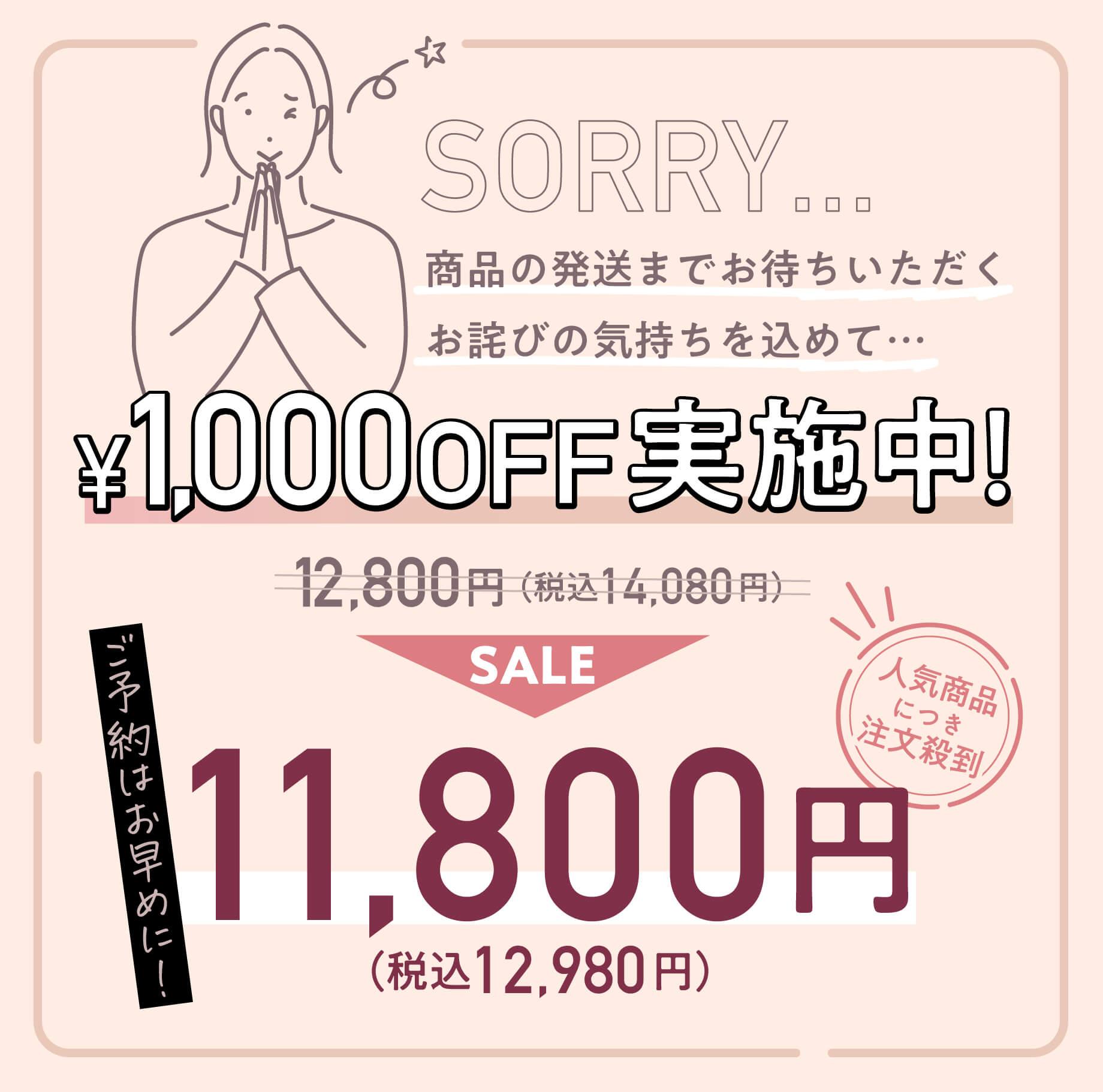 人気につき注文殺到!1,000円オフ実施中!